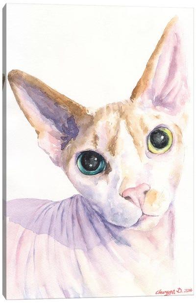 Sphynx Cat Canvas Art Print