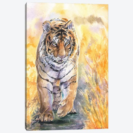 Tiger Canvas Print #GDY139} by George Dyachenko Canvas Artwork