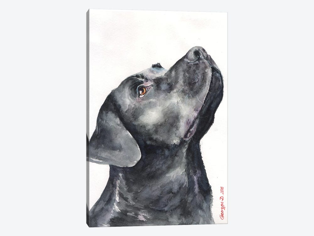 Black Labrador by George Dyachenko 1-piece Canvas Artwork