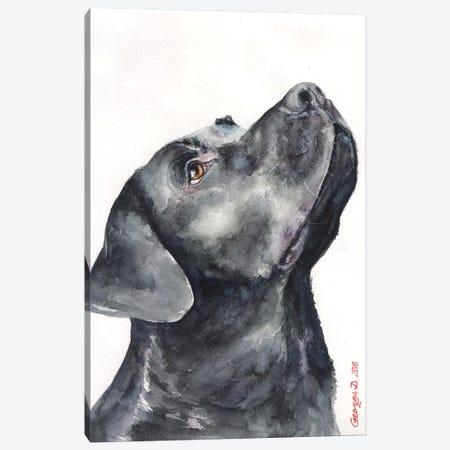 Black Labrador Canvas Print #GDY13} by George Dyachenko Canvas Wall Art