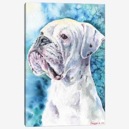 White Boxer Canvas Print #GDY141} by George Dyachenko Canvas Print