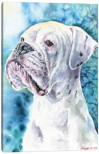 White Boxer Canvas Art Print