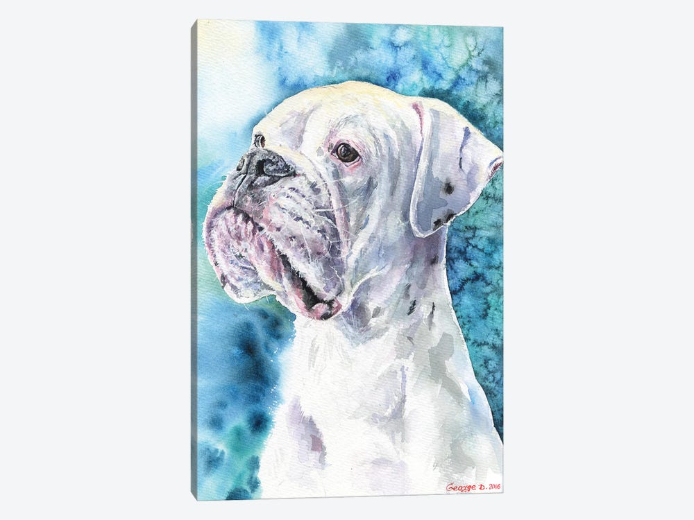 White Boxer 1-piece Canvas Wall Art