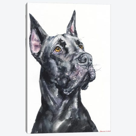 Black Great Dane Canvas Print #GDY148} by George Dyachenko Art Print