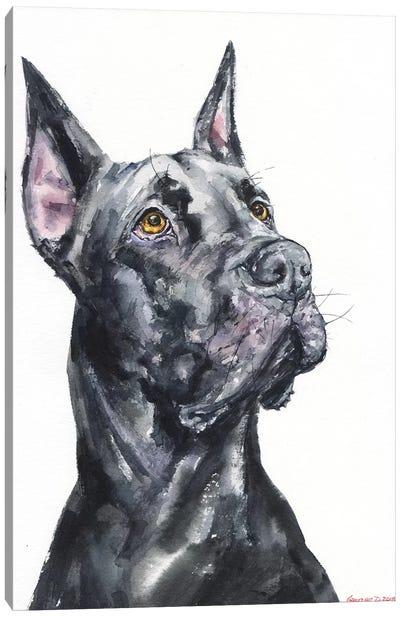 Black Great Dane Canvas Art Print