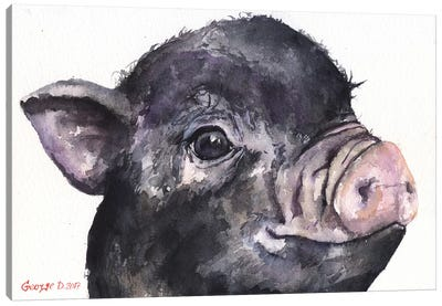 Black Piggy Canvas Art Print