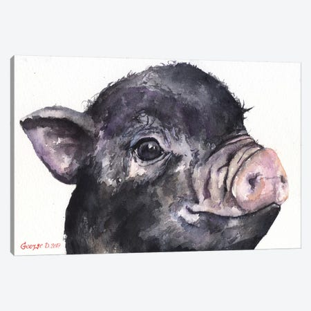 Black Piggy Canvas Print #GDY14} by George Dyachenko Canvas Print