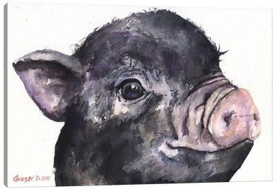 Black Piggy Canvas Art Print