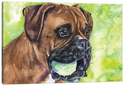 Boxer And Ball Canvas Art Print