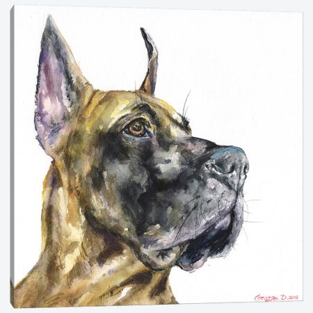 Great Dane Canvas Print #GDY164} by George Dyachenko Canvas Wall Art