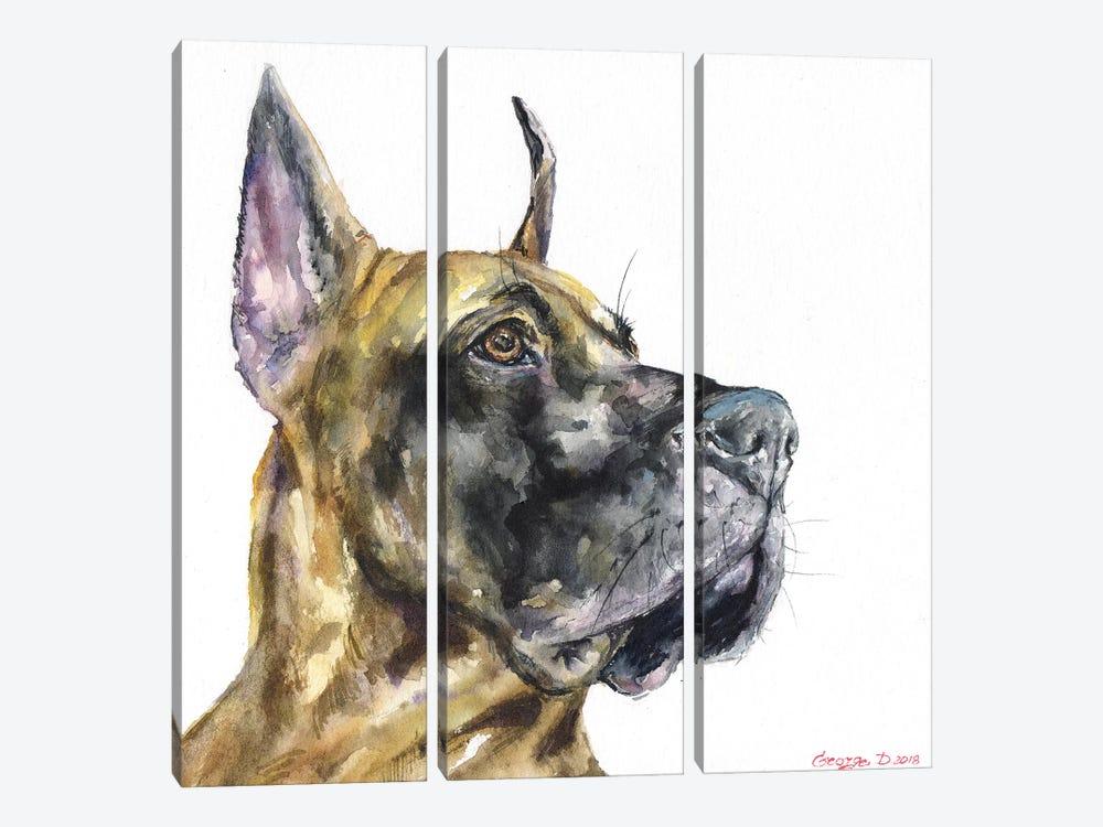 Great Dane by George Dyachenko 3-piece Canvas Print