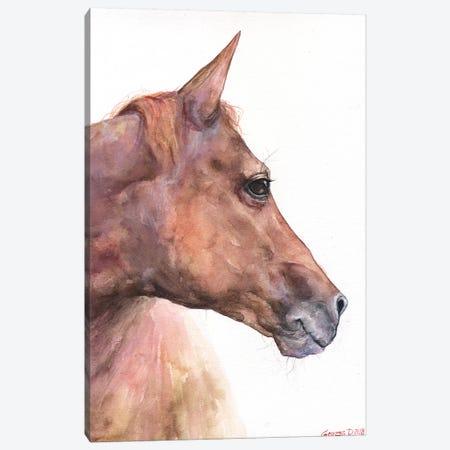 Hanna Canvas Print #GDY165} by George Dyachenko Canvas Art