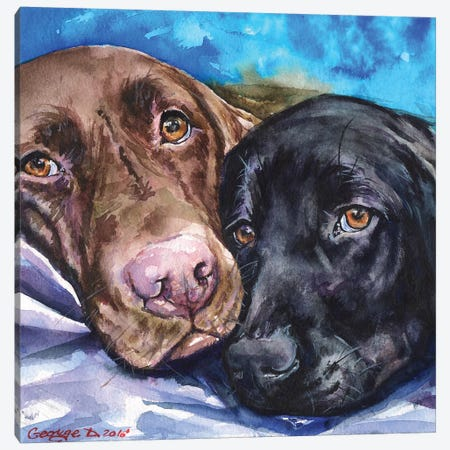 Labs Canvas Print #GDY169} by George Dyachenko Art Print