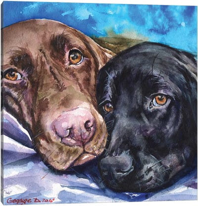 Labs Canvas Art Print