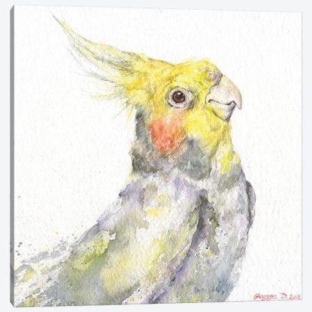 Parrot Canvas Print #GDY171} by George Dyachenko Canvas Artwork