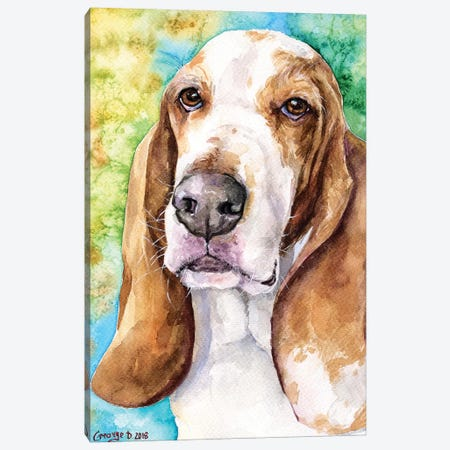 Basset Hound Canvas Print #GDY178} by George Dyachenko Canvas Art