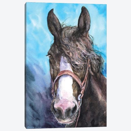 Horse Canvas Print #GDY180} by George Dyachenko Canvas Art Print