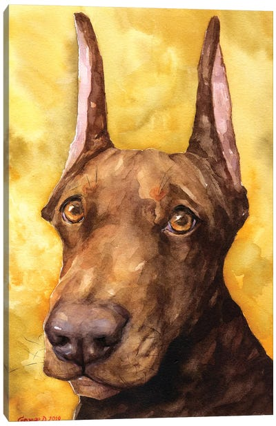 Brown Doberman Canvas Art Print