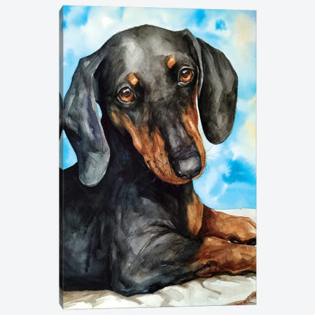 Dachshund Canvas Print #GDY187} by George Dyachenko Canvas Artwork
