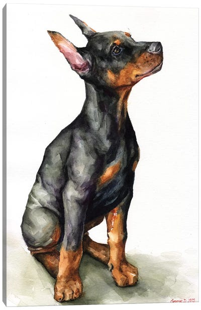 Doberman Puppy Canvas Art Print