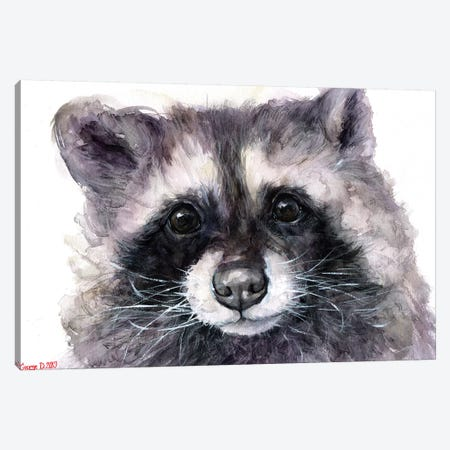 Raccoon Canvas Print #GDY190} by George Dyachenko Canvas Wall Art