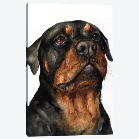 Rottweiler Canvas Print #GDY191} by George Dyachenko Canvas Art
