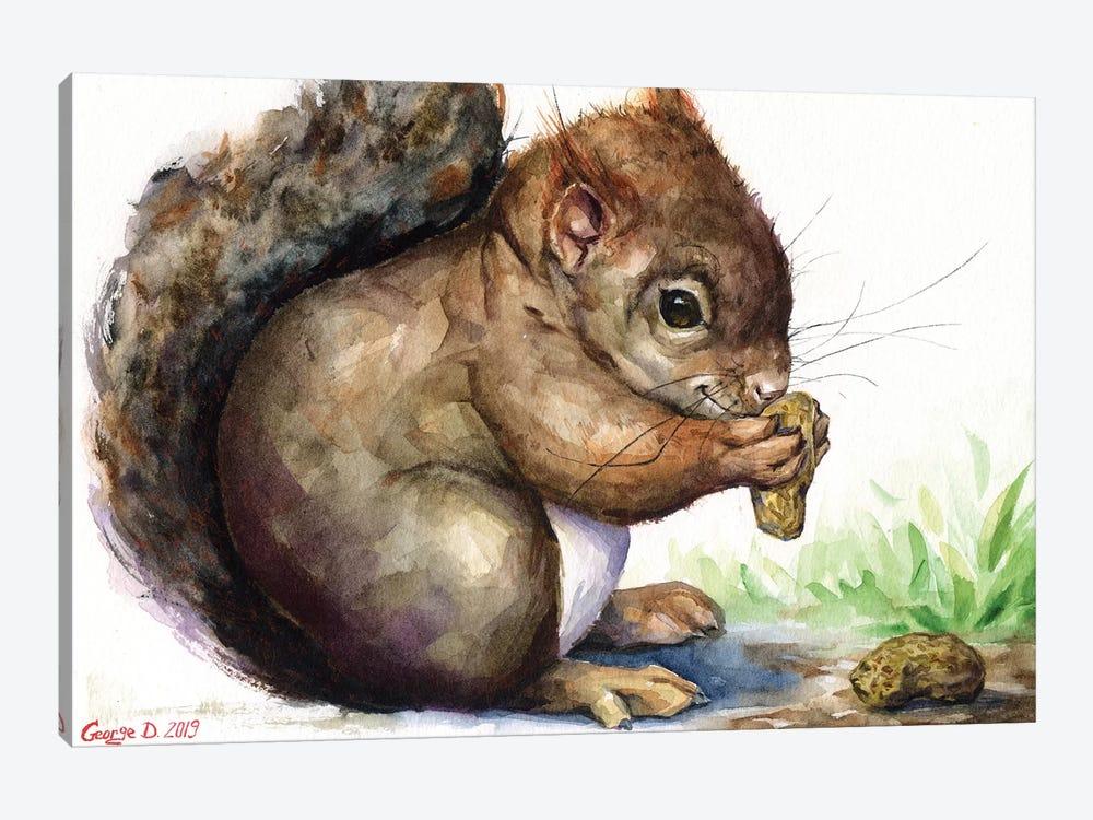 Squirrel by George Dyachenko 1-piece Canvas Wall Art