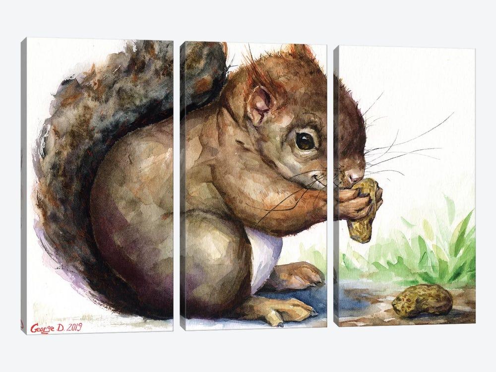 Squirrel by George Dyachenko 3-piece Canvas Wall Art