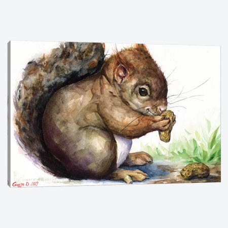 Squirrel Canvas Print #GDY192} by George Dyachenko Canvas Wall Art