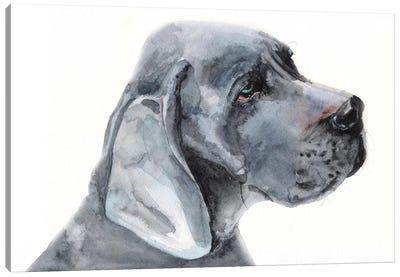 Blue Great Dane Canvas Art Print