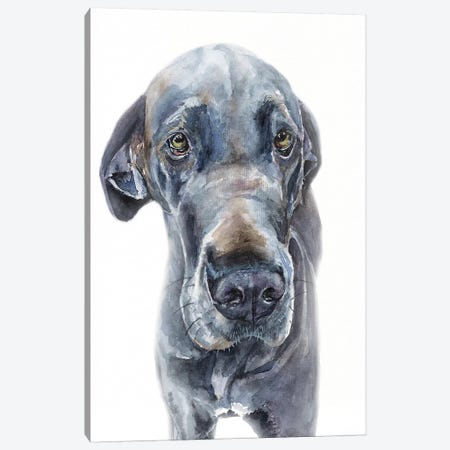 Blue Great Dane Girl Canvas Print #GDY198} by George Dyachenko Canvas Art