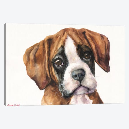 Boxer Puppy II Canvas Print #GDY203} by George Dyachenko Canvas Art