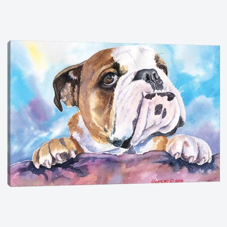 Bulldog Cute Canvas Print #GDY205} by George Dyachenko Canvas Art Print