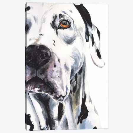 Dalmatian II Canvas Print #GDY211} by George Dyachenko Canvas Art Print