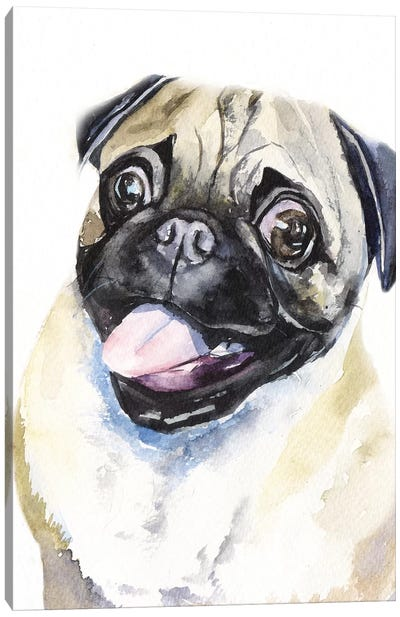 Fawn Pug Canvas Art Print