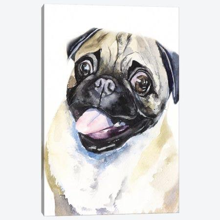 Fawn Pug Canvas Print #GDY217} by George Dyachenko Canvas Wall Art
