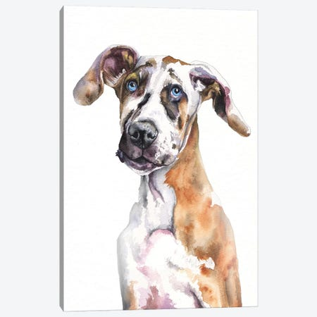 Great Dane Puppy Canvas Print #GDY219} by George Dyachenko Canvas Art Print