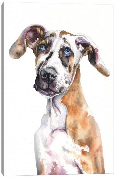 Great Dane Puppy Canvas Art Print