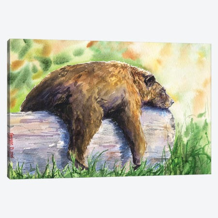 Grizzly Canvas Print #GDY220} by George Dyachenko Canvas Artwork