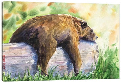 Grizzly Canvas Art Print