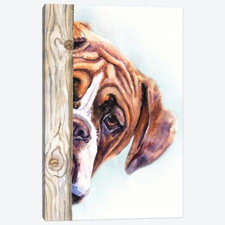 Hide And Seek II Canvas Print #GDY221} by George Dyachenko Canvas Wall Art