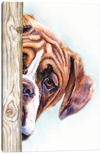 Hide And Seek II Canvas Art Print