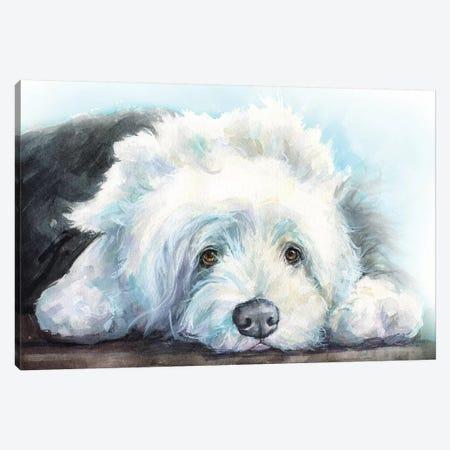 Old English Sheepdog Puppy 3-Piece Canvas #GDY224} by George Dyachenko Canvas Print