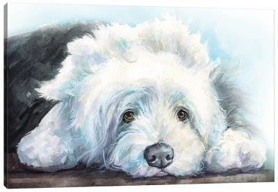 Old English Sheepdog Puppy Canvas Art Print