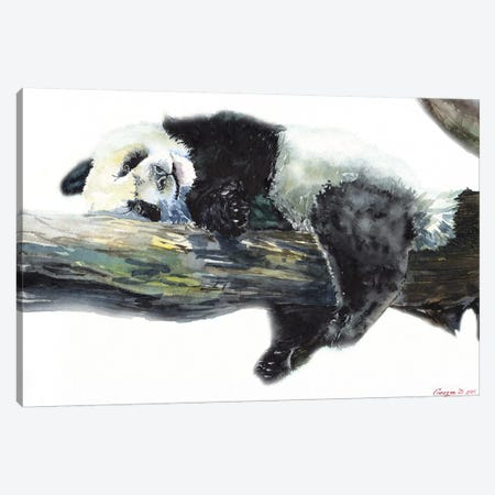 Panda Canvas Print #GDY225} by George Dyachenko Art Print