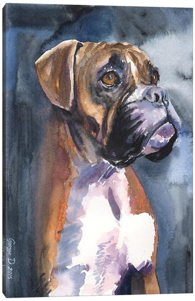 Boxer In The Mist Canvas Art Print