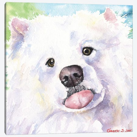 Samoyed Canvas Print #GDY231} by George Dyachenko Canvas Print