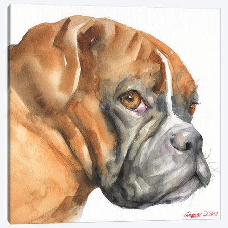 Boxer Canvas Print #GDY236} by George Dyachenko Canvas Artwork