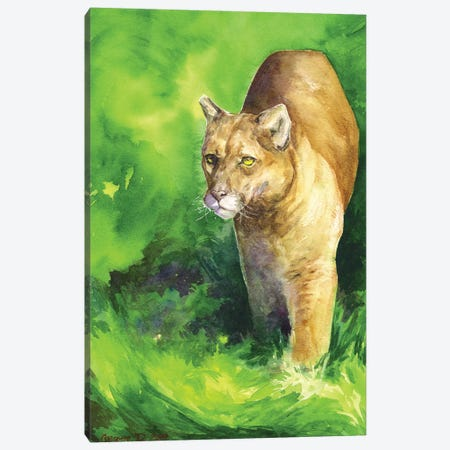 Mountain Lion Canvas Print #GDY237} by George Dyachenko Canvas Wall Art