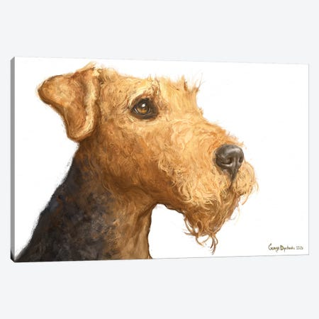 Airedale White Background Canvas Print #GDY239} by George Dyachenko Art Print